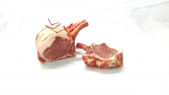 Côte de porc Ibérique
